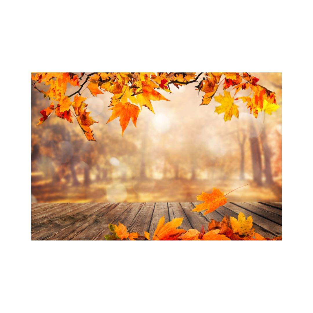 83:「希望の秋!店頭をチェックして準備する」